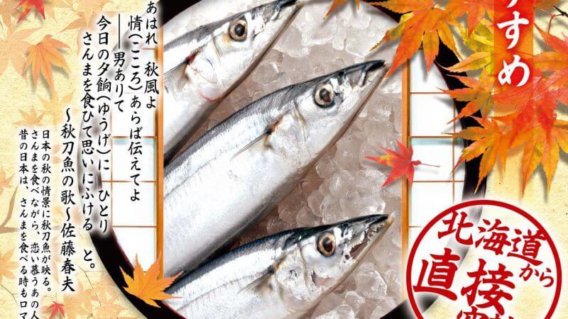 9月のおすすめは「秋刀魚」