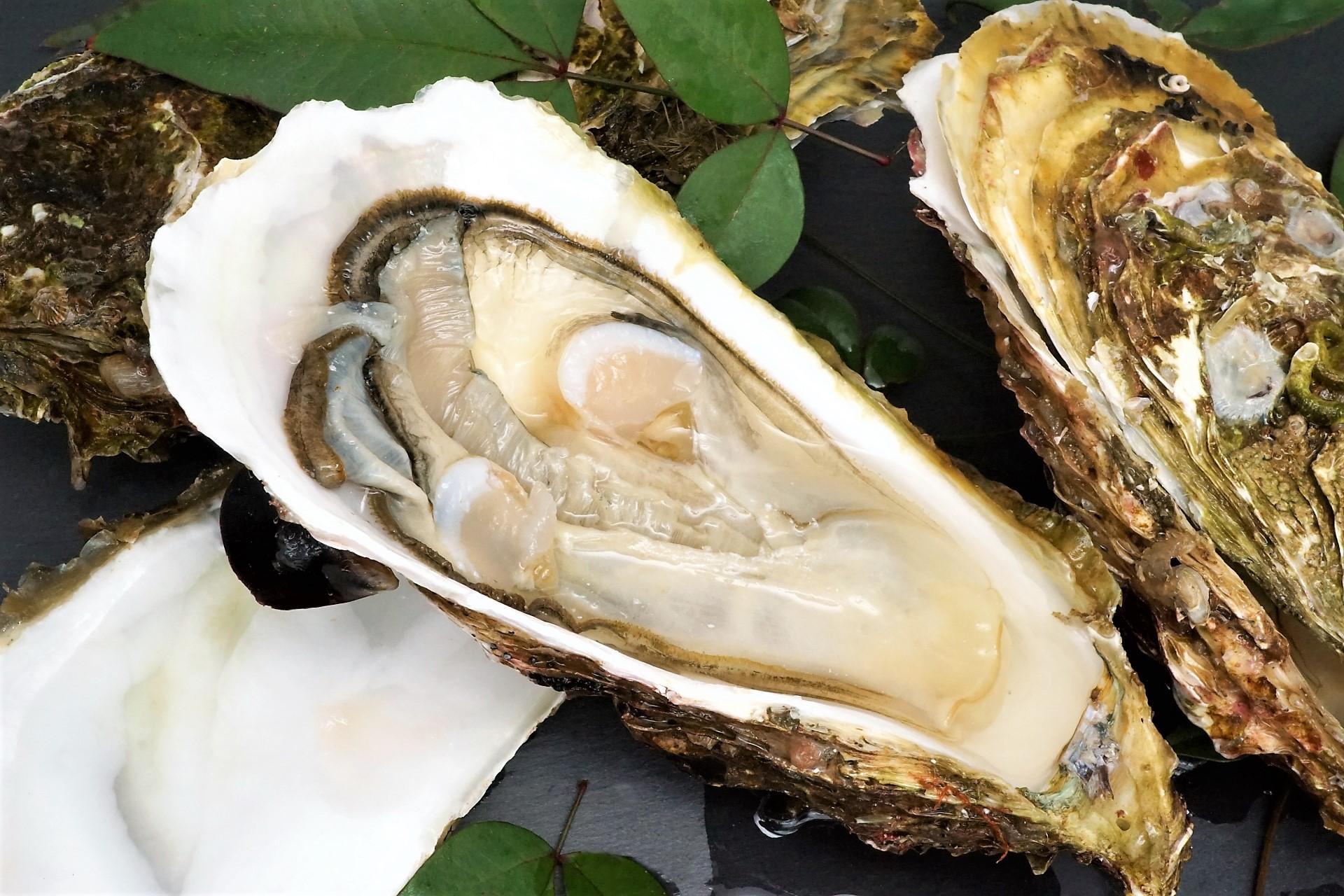 牡蠣は加熱で栄養素が少なくなる?