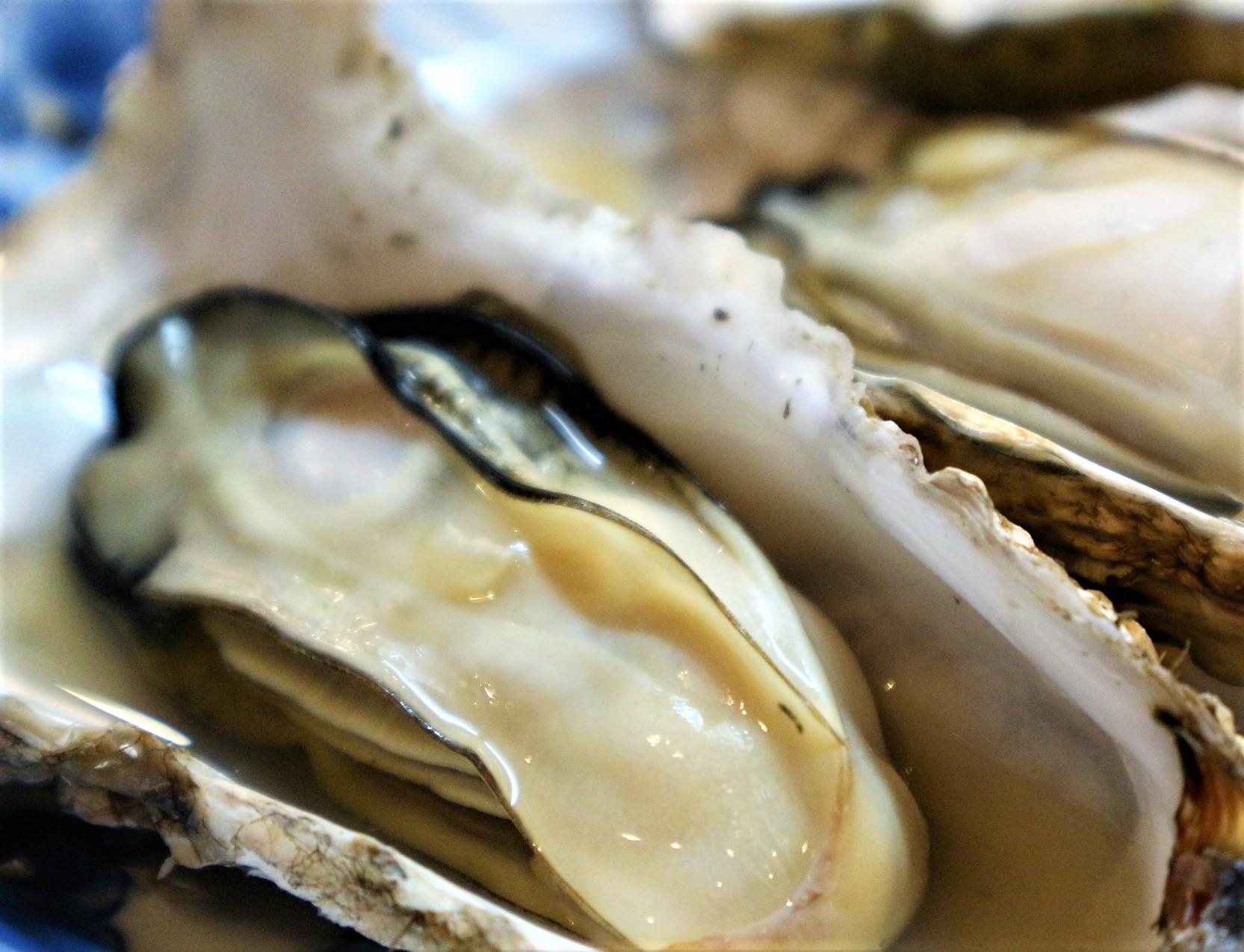 蒸し牡蠣のおいしい食べ方
