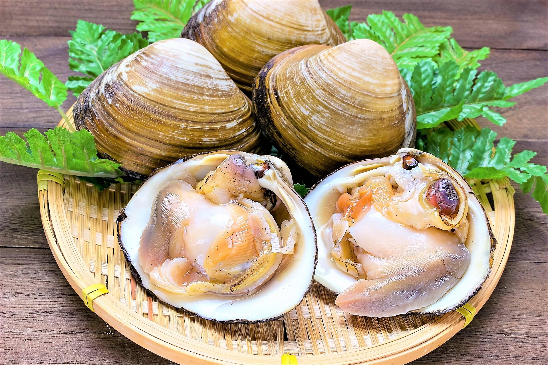 北寄貝は食べられるまでに数年かかる